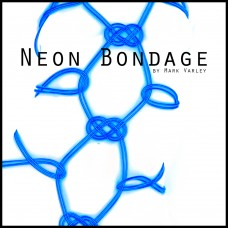 Book: Neon Bondage (Currently available for pre-order)